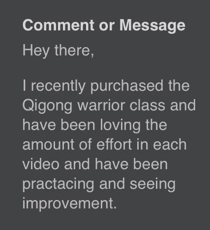 warrior neigong review qigong